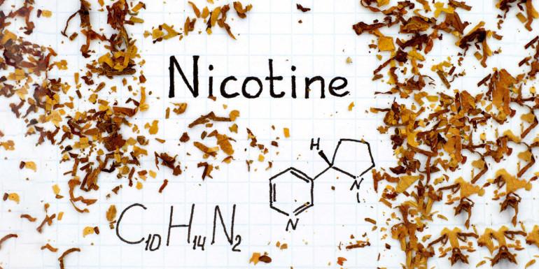 Nicotine : amie ou ennemie ?